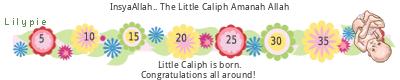 Lilypie Maternity (2G7u)