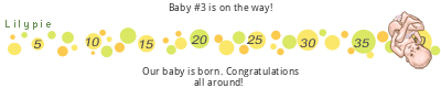 Lilypie Maternity tickers