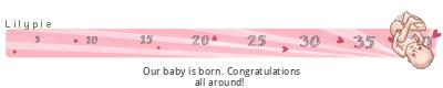 Lilypie Maternity ticker</p></div>                            </div>         </div>      </div>         </div>                                   <div>             <div class=