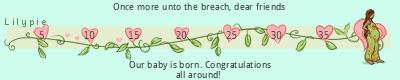 Lilypie Maternity ticke</p></div>                            </div>         </div>      </div>         </div>                                   <div>             <div class=